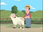 Perverted Sheep Shearing Uncensored caught on cam