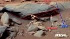 Mars .Curiosity.(créature.anomalie). 2013
